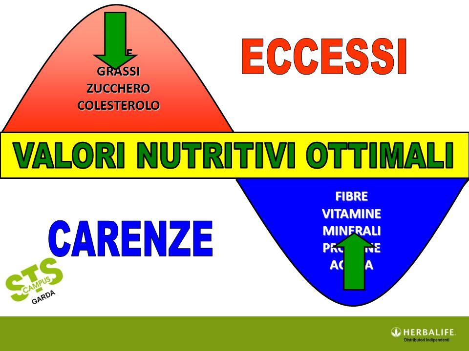 FIBRE VITAMINE MINERALI PROTEINE ACQUA SALE GRASSI ZUCCHERO COLESTEROLO FIBRE VITAMINE MINERALI PROTEINE ACQUA