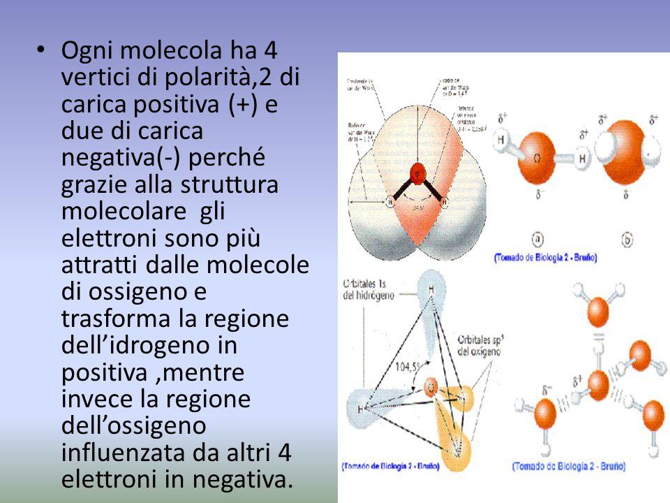 Ogni molecola ha 4 vertici di polarità,2 di carica positiva (+) e due di carica negativa(-) perché grazie alla struttura molecolare gli elettroni sono