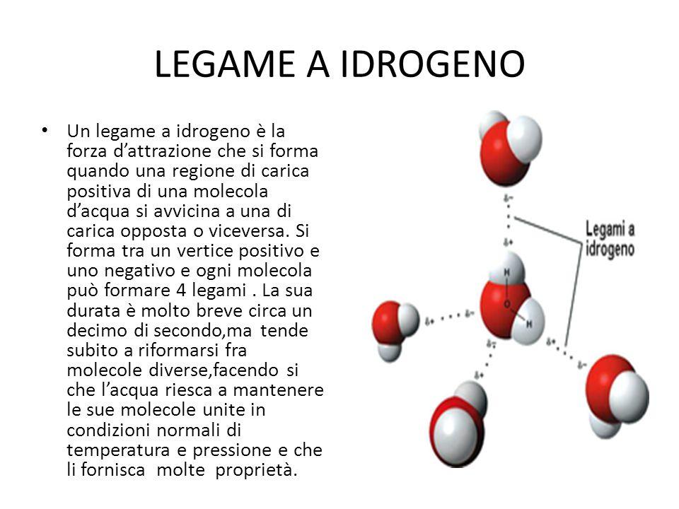 LEGAME A IDROGENO Un legame a idrogeno è la forza d'attrazione che si forma quando una regione di carica positiva di una molecola d'acqua si avvicina