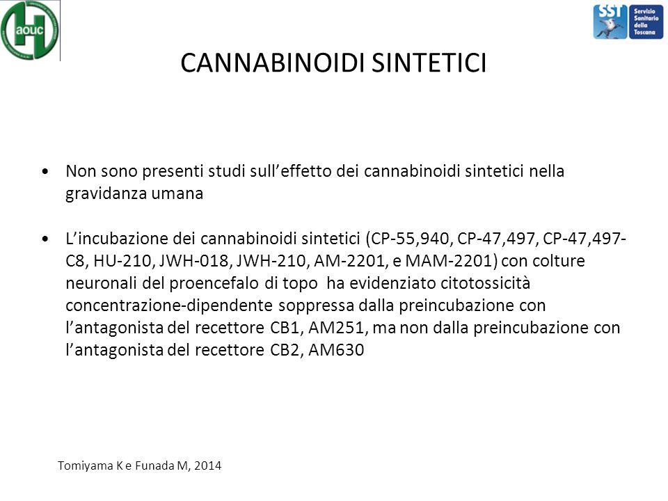 CANNABINOIDI SINTETICI Non sono presenti studi sull'effetto dei cannabinoidi sintetici nella gravidanza umana L'incubazione dei cannabinoidi sintetici