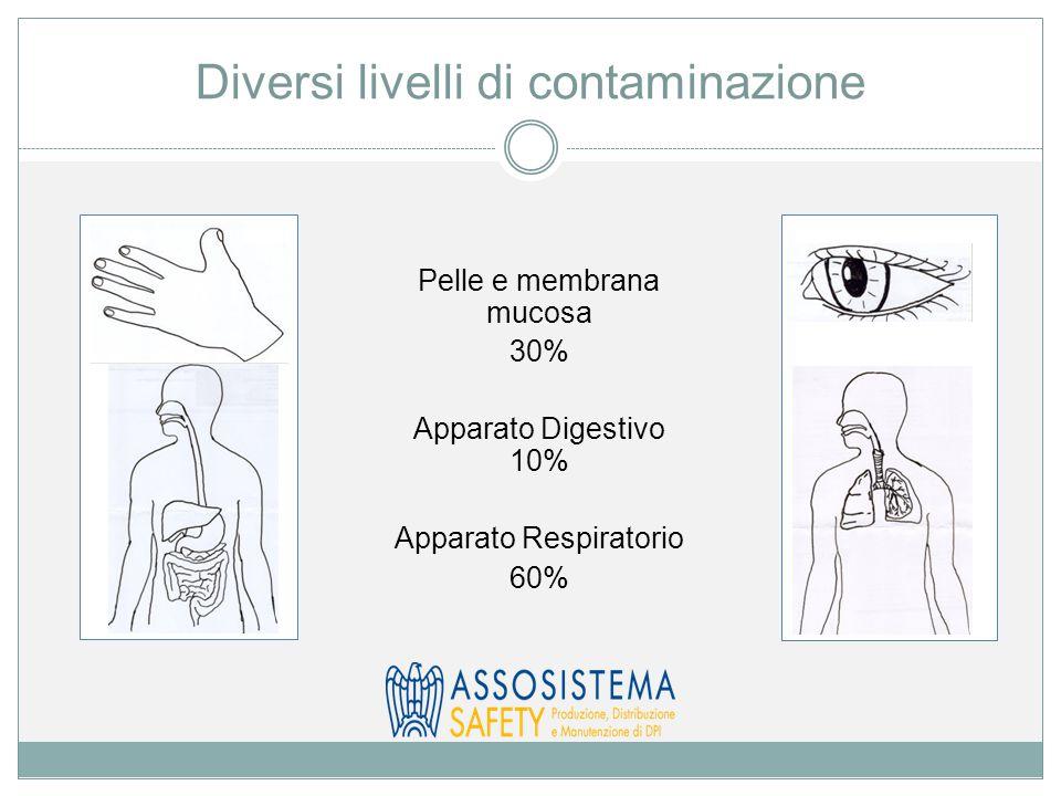 Diversi livelli di contaminazione Pelle e membrana mucosa 30% Apparato Digestivo 10% Apparato Respiratorio 60%