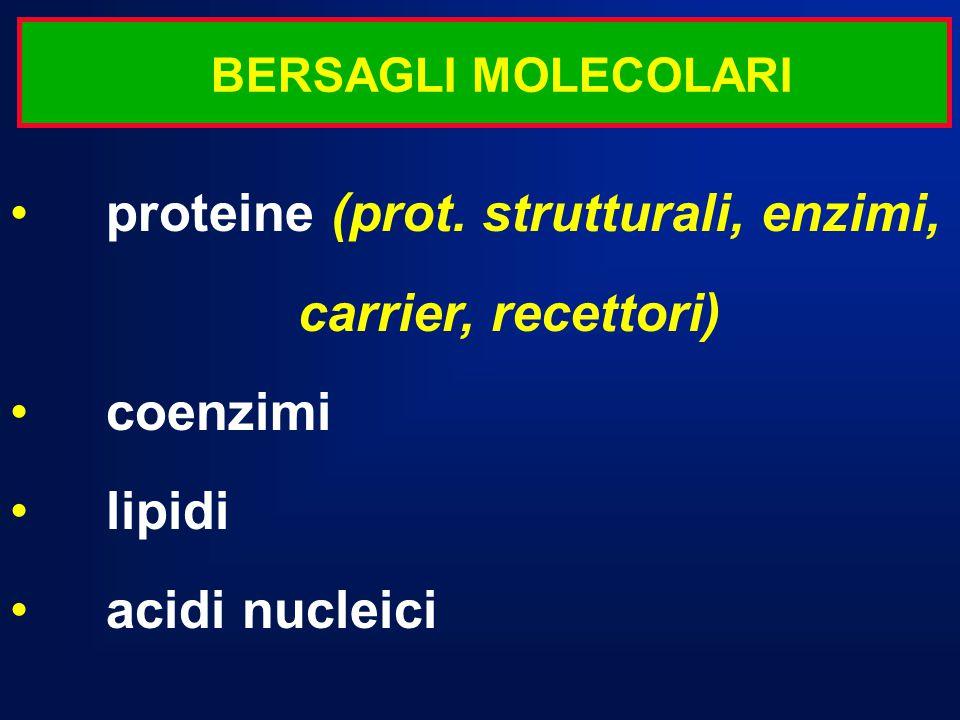 proteine (prot. strutturali, enzimi, carrier, recettori) coenzimi lipidi acidi nucleici BERSAGLI MOLECOLARI