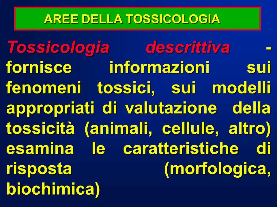 Tossicologia descrittiva - fornisce informazioni sui fenomeni tossici, sui modelli appropriati di valutazione della tossicità (animali, cellule, altro