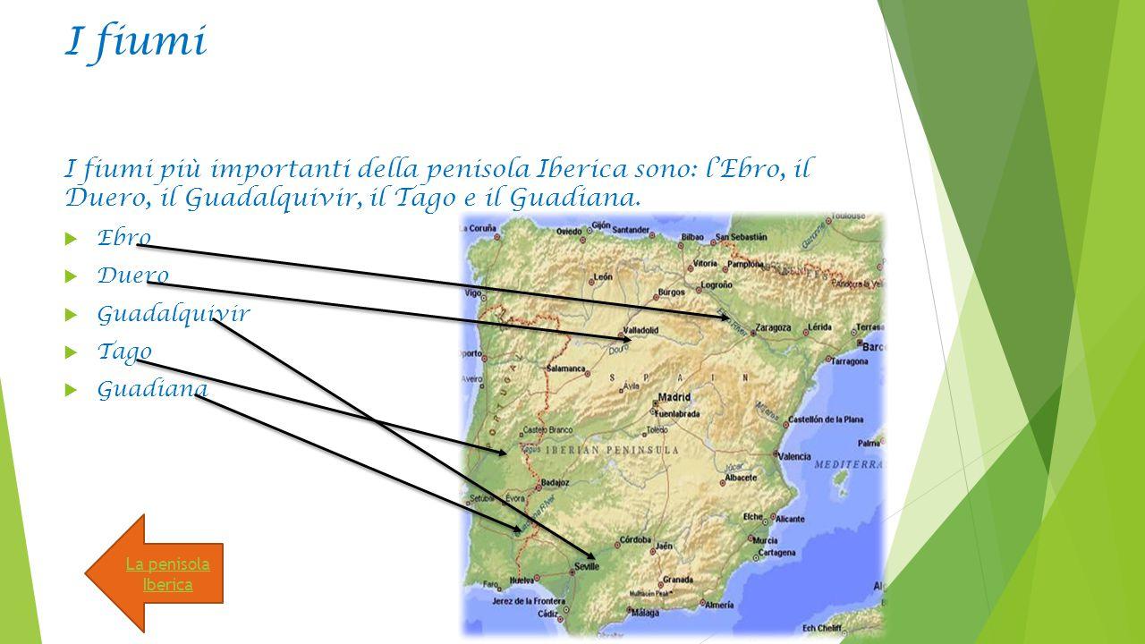 I fiumi I fiumi più importanti della penisola Iberica sono: l'Ebro, il Duero, il Guadalquivir, il Tago e il Guadiana.  Ebro  Duero  Guadalquivir 