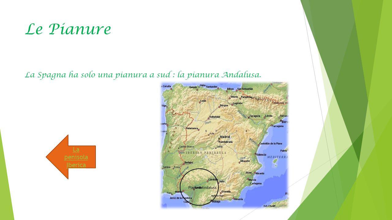 Le Pianure La Spagna ha solo una pianura a sud : la pianura Andalusa. Pianura Andalusa La penisola Iberica