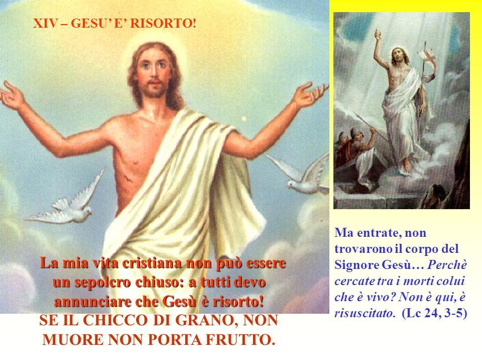 Ma entrate, non trovarono il corpo del Signore Gesù… Perchè cercate tra i morti colui che è vivo? Non è qui, è risuscitato. (Lc 24, 3-5) XIV – GESU' E