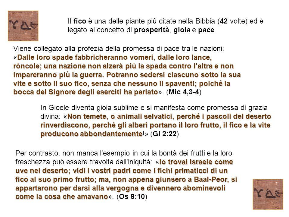Il fico è una delle piante più citate nella Bibbia (42 volte) ed è legato al concetto di prosperità, gioia e pace. Dalle loro spade fabbricheranno vom