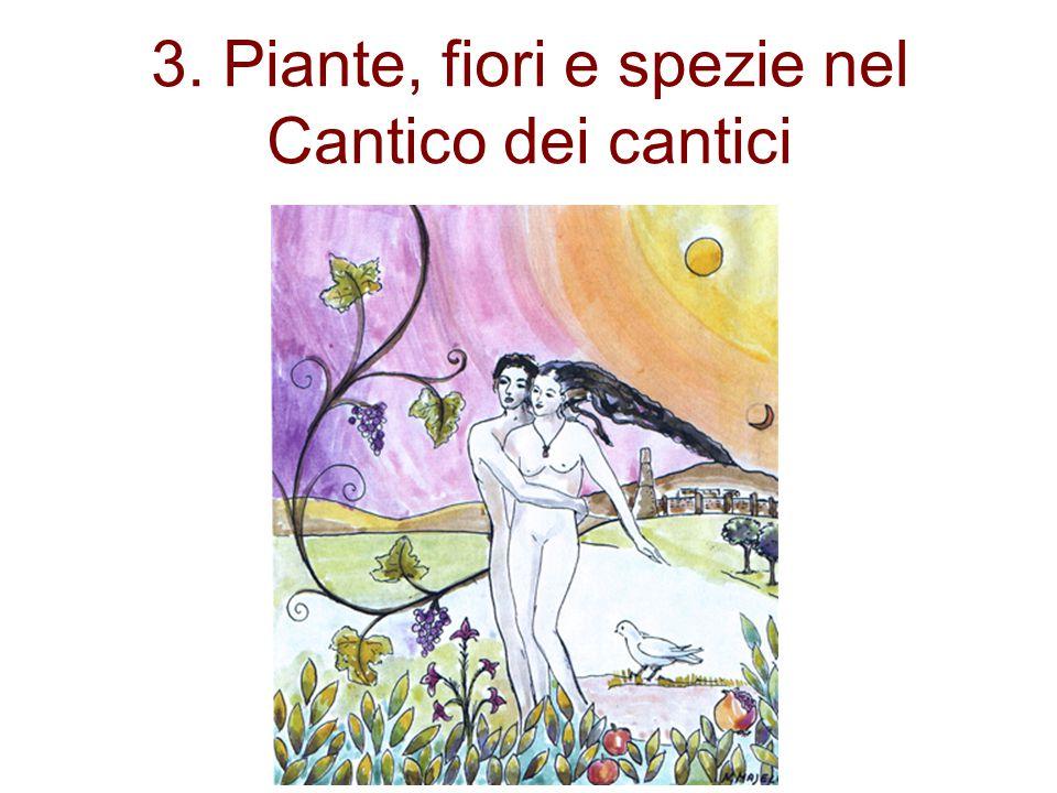 3. Piante, fiori e spezie nel Cantico dei cantici