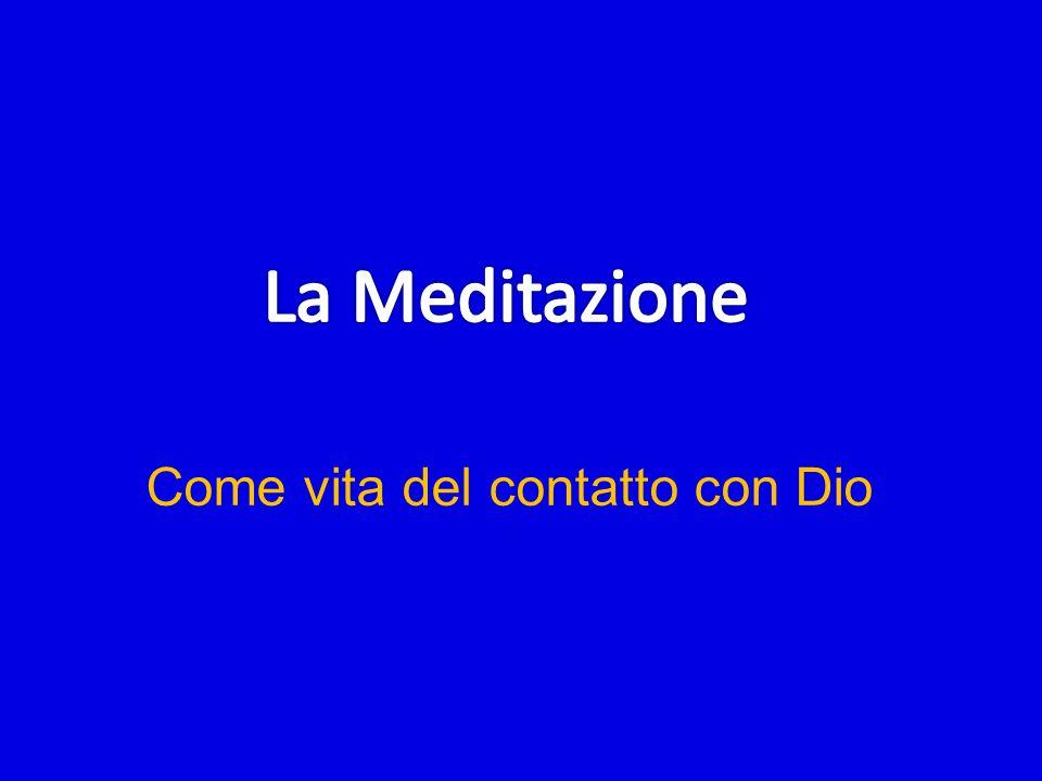 Oggi non vorrei parlare su tutto questo cammino della fede, ma solo su un piccolo aspetto della vita della preghiera che è la vita del contatto con Dio, cioè sulla meditazione.
