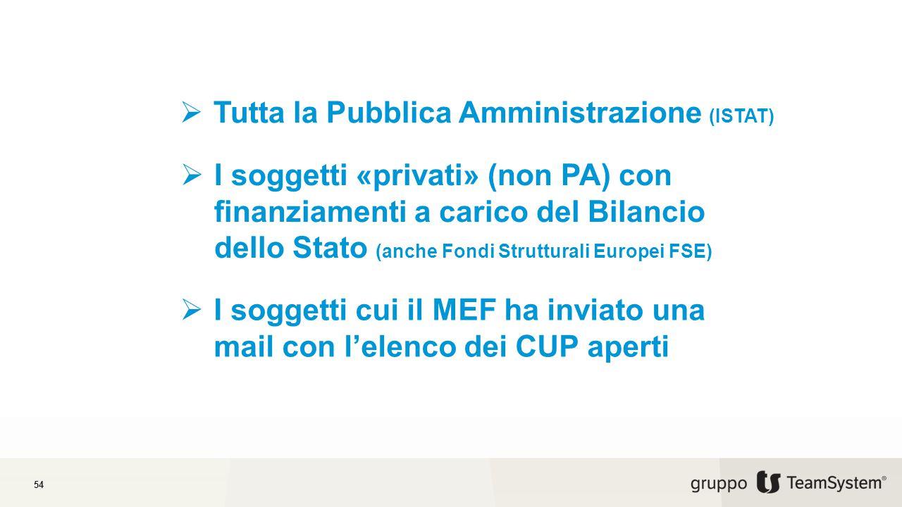 54  Tutta la Pubblica Amministrazione (ISTAT)  I soggetti «privati» (non PA) con finanziamenti a carico del Bilancio dello Stato (anche Fondi Strutturali Europei FSE)  I soggetti cui il MEF ha inviato una mail con l'elenco dei CUP aperti