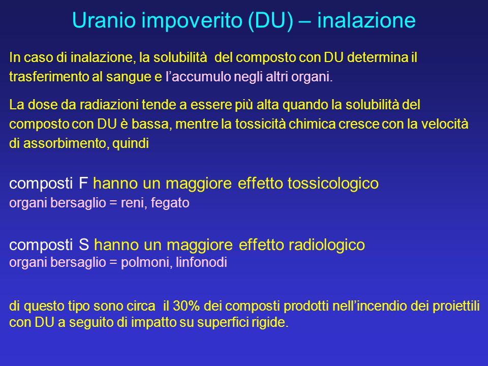 Uranio impoverito (DU) – inalazione In caso di inalazione, la solubilità del composto con DU determina il trasferimento al sangue e l'accumulo negli a