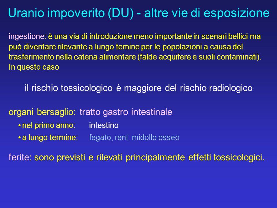 Uranio impoverito (DU) - altre vie di esposizione ingestione: è una via di introduzione meno importante in scenari bellici ma può diventare rilevante