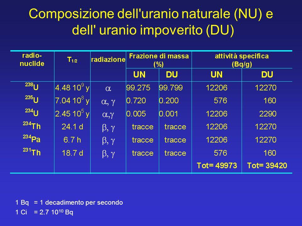 Composizione dell'uranio naturale (NU) e dell' uranio impoverito (DU) 1 Bq = 1 decadimento per secondo 1 Ci = 2.7 10 10 Bq