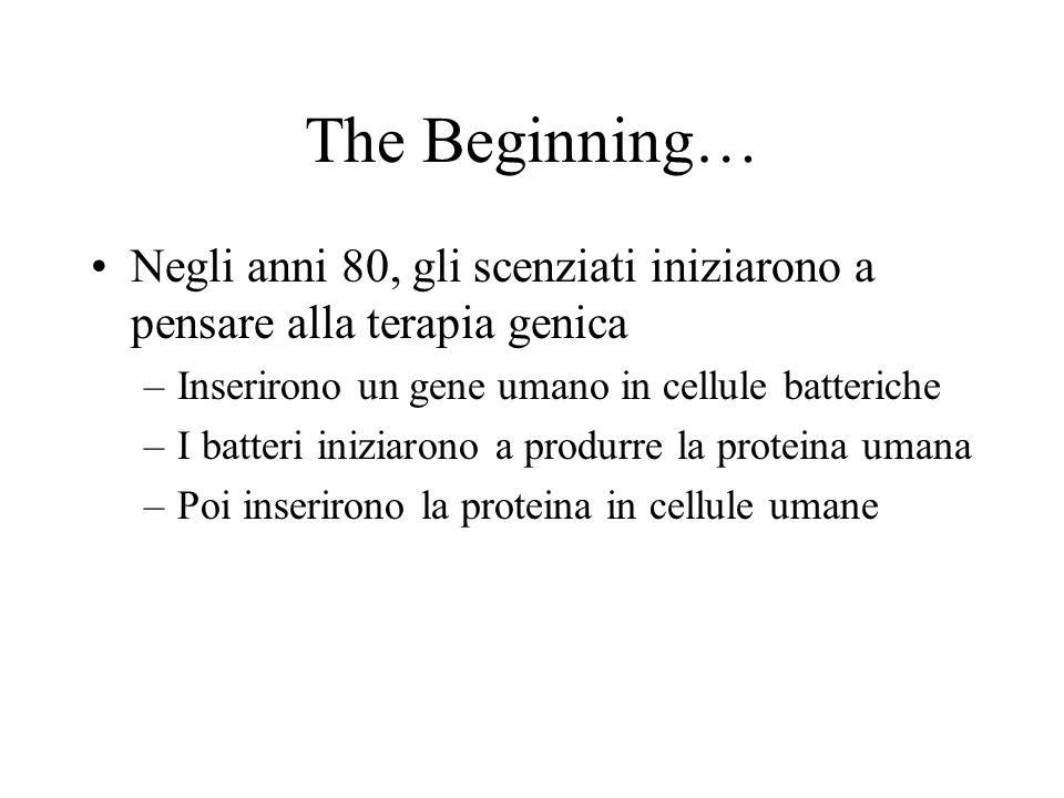 The Beginning… Negli anni 80, gli scenziati iniziarono a pensare alla terapia genica –Inserirono un gene umano in cellule batteriche –I batteri iniziarono a produrre la proteina umana –Poi inserirono la proteina in cellule umane