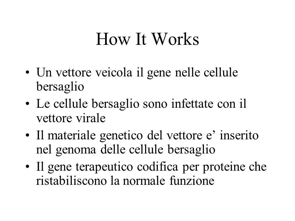 How It Works Un vettore veicola il gene nelle cellule bersaglio Le cellule bersaglio sono infettate con il vettore virale Il materiale genetico del vettore e' inserito nel genoma delle cellule bersaglio Il gene terapeutico codifica per proteine che ristabiliscono la normale funzione