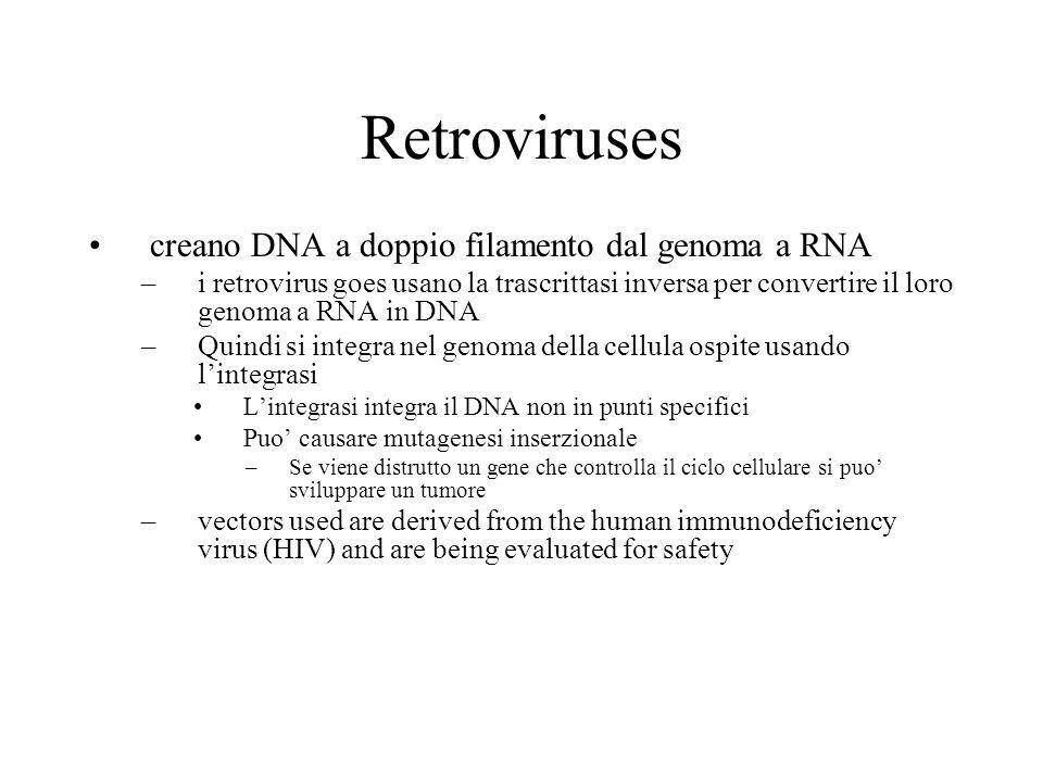 Retroviruses creano DNA a doppio filamento dal genoma a RNA –i retrovirus goes usano la trascrittasi inversa per convertire il loro genoma a RNA in DNA –Quindi si integra nel genoma della cellula ospite usando l'integrasi L'integrasi integra il DNA non in punti specifici Puo' causare mutagenesi inserzionale –Se viene distrutto un gene che controlla il ciclo cellulare si puo' sviluppare un tumore –vectors used are derived from the human immunodeficiency virus (HIV) and are being evaluated for safety