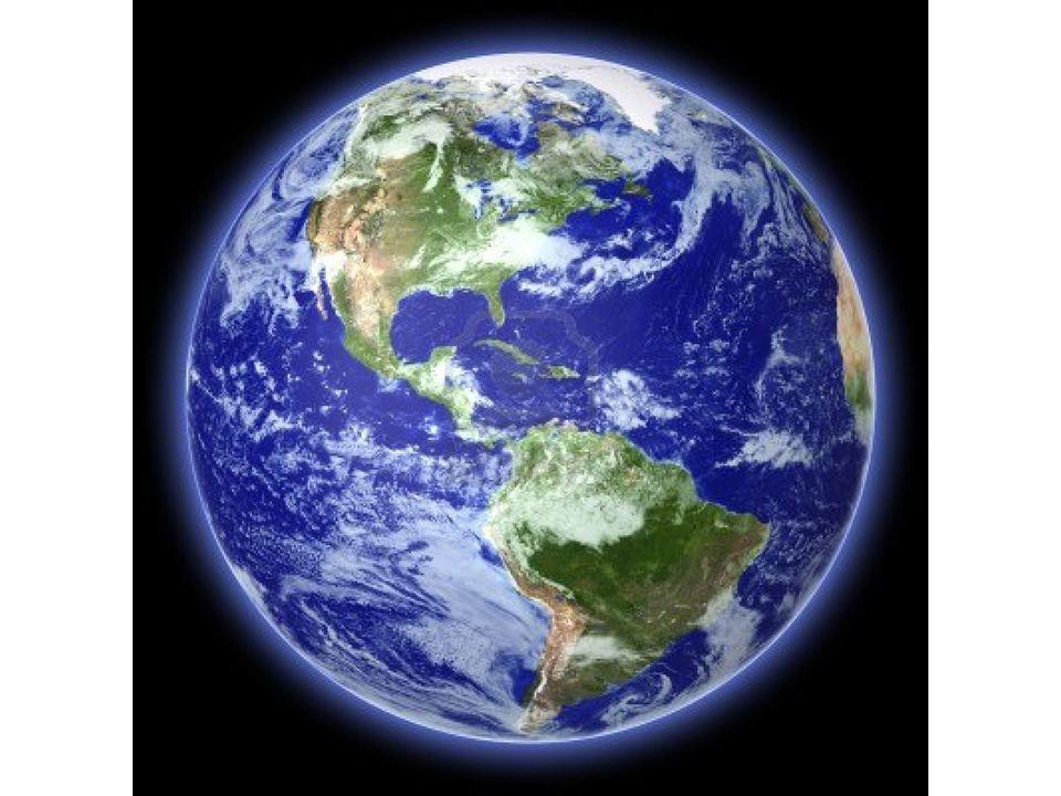I biomi terrestri sono identificati dalla loro flora e fauna..