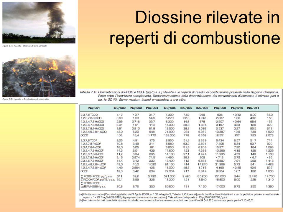 Diossine rilevate in reperti di combustione 28