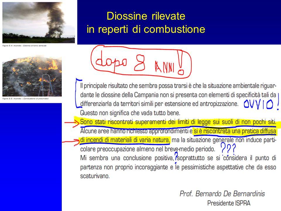 Diossine rilevate in reperti di combustione 29