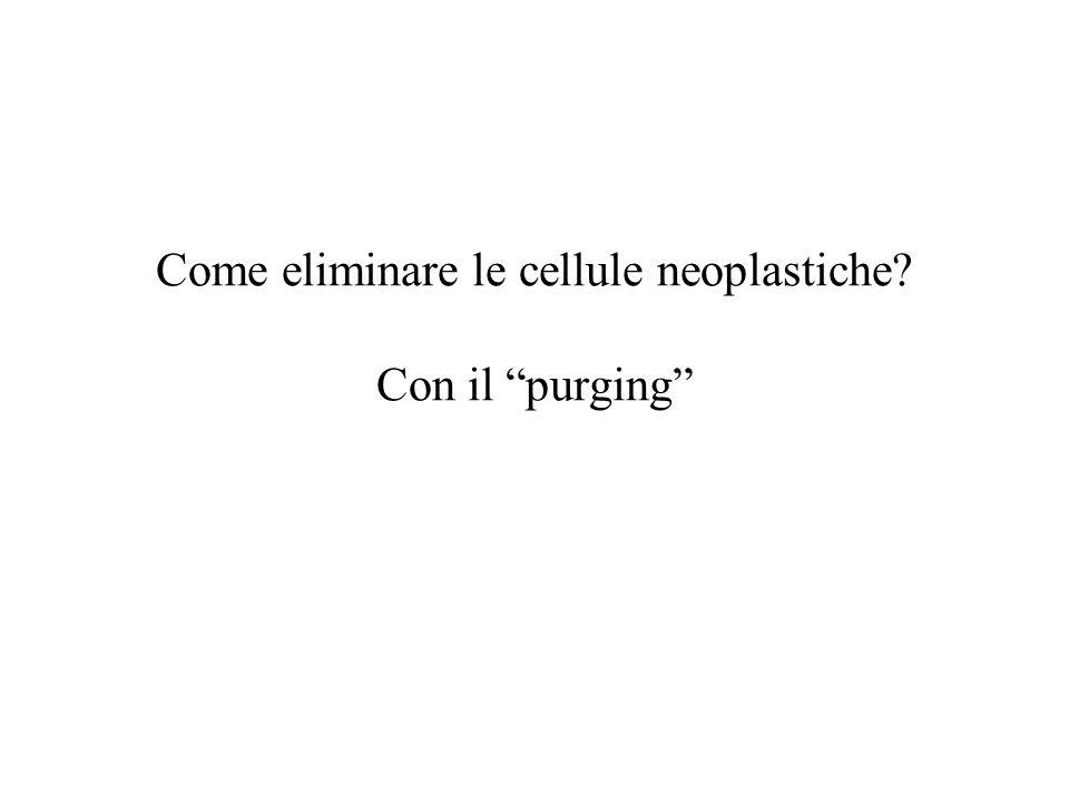 """Come eliminare le cellule neoplastiche? Con il """"purging"""""""