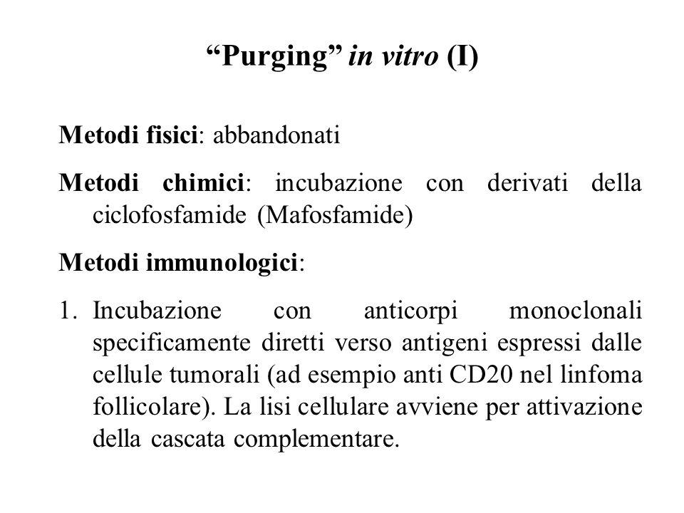 """""""Purging"""" in vitro (I) Metodi fisici: abbandonati Metodi chimici: incubazione con derivati della ciclofosfamide (Mafosfamide) Metodi immunologici: 1.I"""