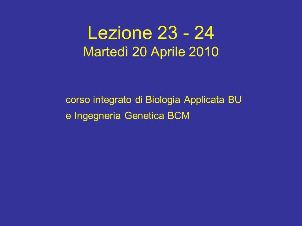 Lezione 23 - 24 Martedì 20 Aprile 2010 corso integrato di Biologia Applicata BU e Ingegneria Genetica BCM