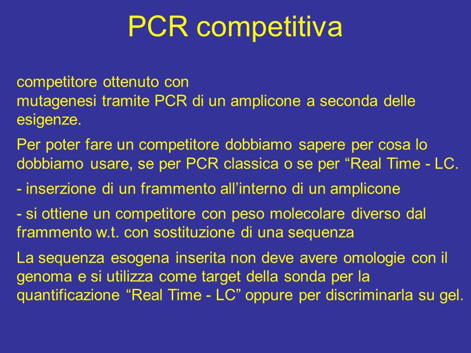 PCR competitiva competitore ottenuto con mutagenesi tramite PCR di un amplicone a seconda delle esigenze.