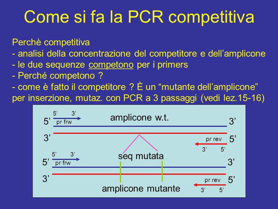 Come si fa la PCR competitiva Perchè competitiva - analisi della concentrazione del competitore e dell'amplicone - le due sequenze competono per i primers - Perché competono .