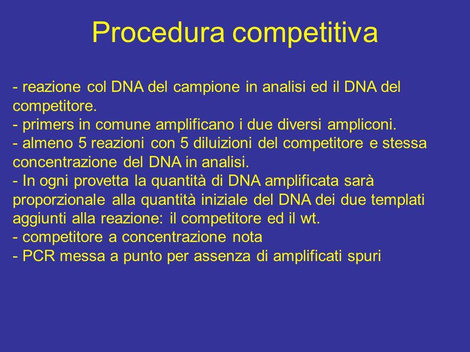 Procedura competitiva - reazione col DNA del campione in analisi ed il DNA del competitore.