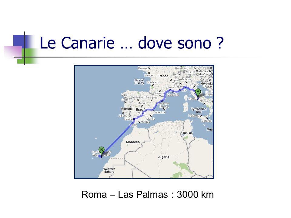 Le Canarie … dove sono ? Roma – Las Palmas : 3000 km