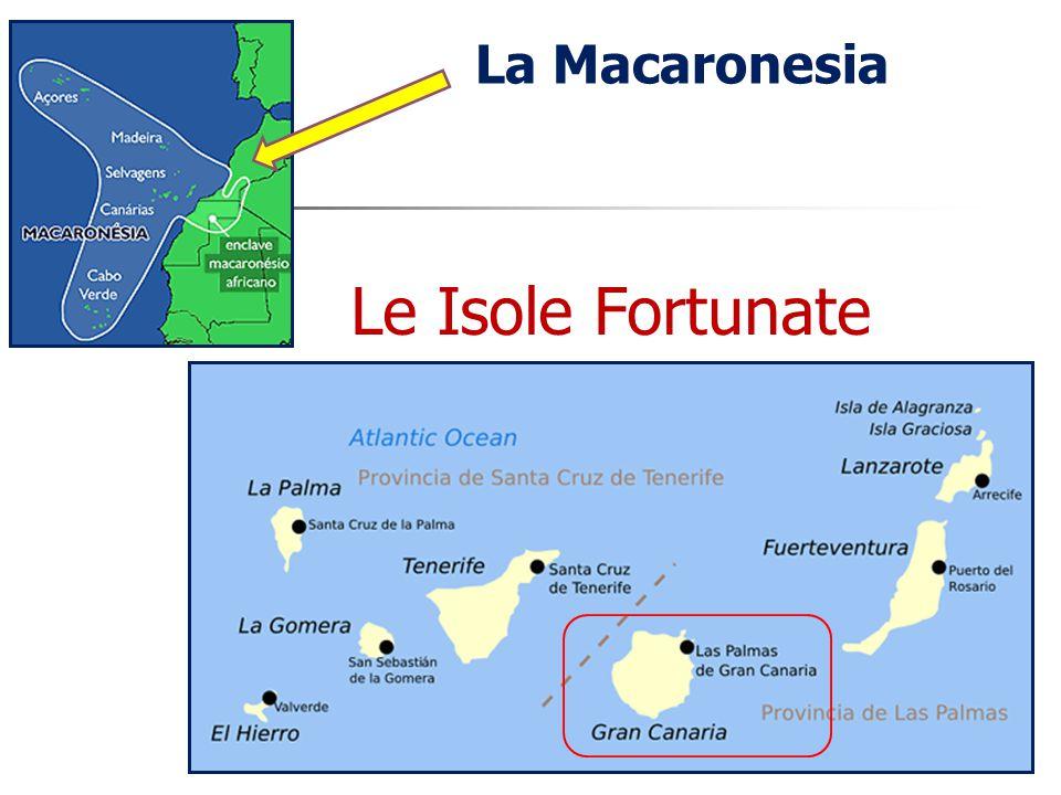 La Macaronesia Le Isole Fortunate