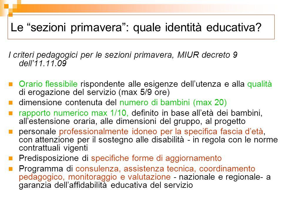 L'intervento educativo: aree e tratti distintivi  L'inserimento e la relazione educativa  Le routine  Gioco e attività  Il passaggio alla scuola dell'infanzia