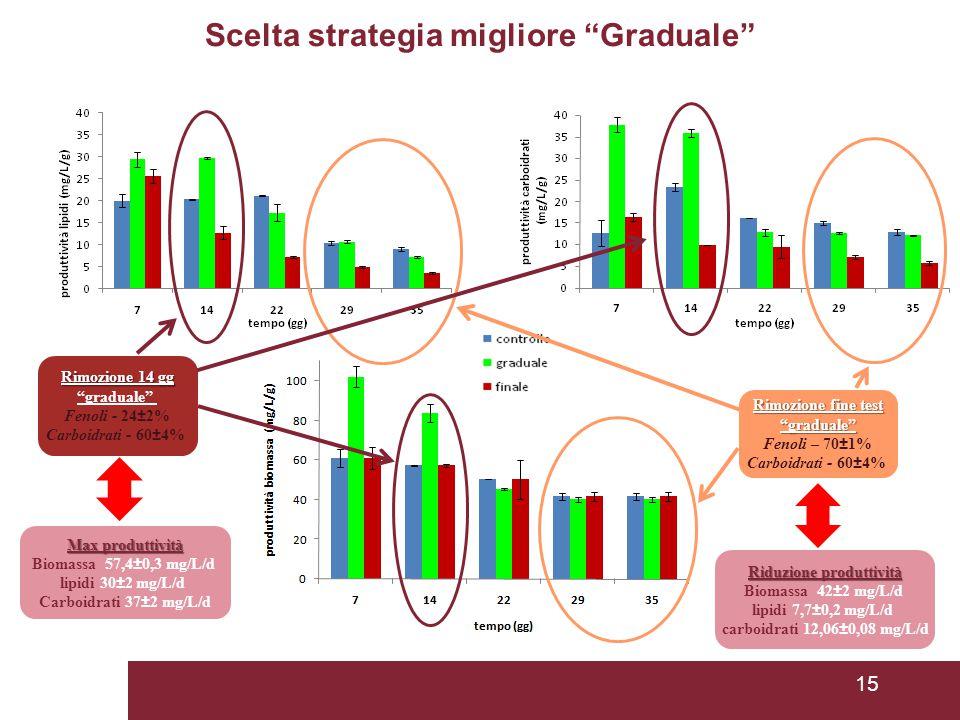 15 Scelta strategia migliore Graduale Rimozione fine test graduale Fenoli – 70±1% Carboidrati - 60±4% Rimozione 14 gg graduale Fenoli - 24±2% Carboidrati - 60±4% Max produttività Biomassa 57,4±0,3 mg/L/d lipidi 30±2 mg/L/d Carboidrati 37±2 mg/L/d Riduzione produttività Biomassa 42±2 mg/L/d lipidi 7,7±0,2 mg/L/d carboidrati 12,06±0,08 mg/L/d