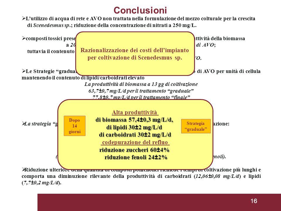 16  L'utilizzo di acqua di rete e AVO non trattata nella formulazione del mezzo colturale per la crescita di Scenedesmus sp.; riduzione della concentrazione di nitrati a 250 mg/L.