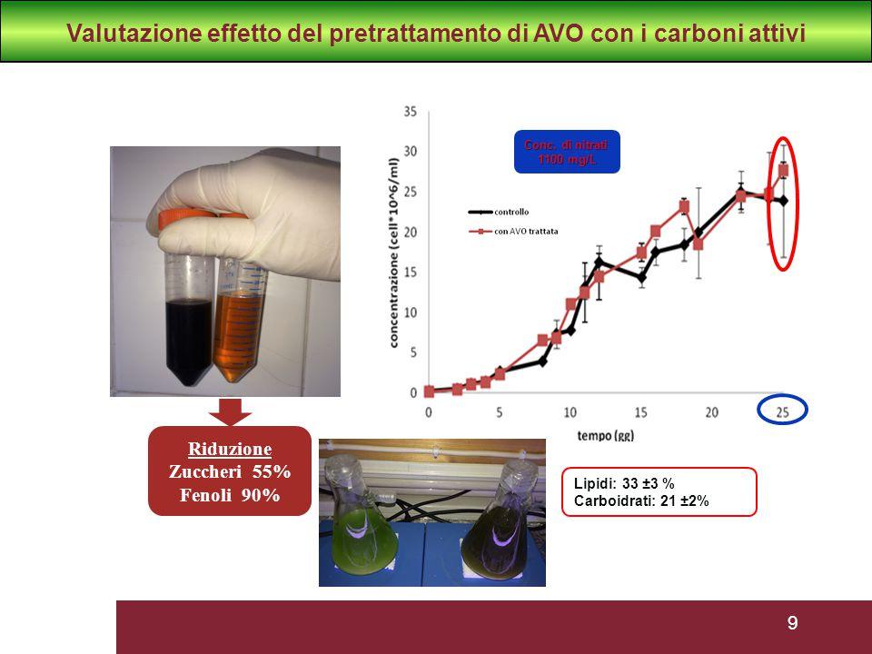 9 Riduzione Zuccheri 55% Fenoli 90% Lipidi: 33 ±3 % Carboidrati: 21 ±2% Conc. di nitrati 1100 mg/L Valutazione effetto del pretrattamento di AVO con i