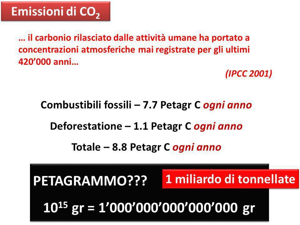 Combustibili fossili – 7.7 Petagr C ogni anno Deforestatione – 1.1 Petagr C ogni anno Totale – 8.8 Petagr C ogni anno Emissioni di CO 2 PETAGRAMMO???