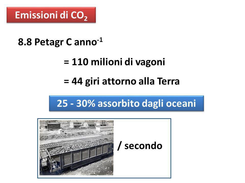 8.8 Petagr C anno -1 = 110 milioni di vagoni = 44 giri attorno alla Terra Emissioni di CO 2 25 - 30% assorbito dagli oceani / secondo