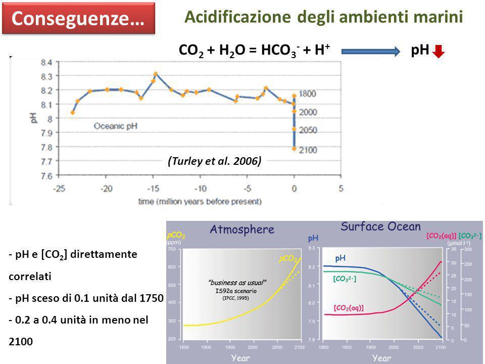 (Turley et al. 2006) Conseguenze… CO 2 + H 2 O = HCO 3 - + H + pH - pH e [CO 2 ] direttamente correlati - pH sceso di 0.1 unità dal 1750 - 0.2 a 0.4 u