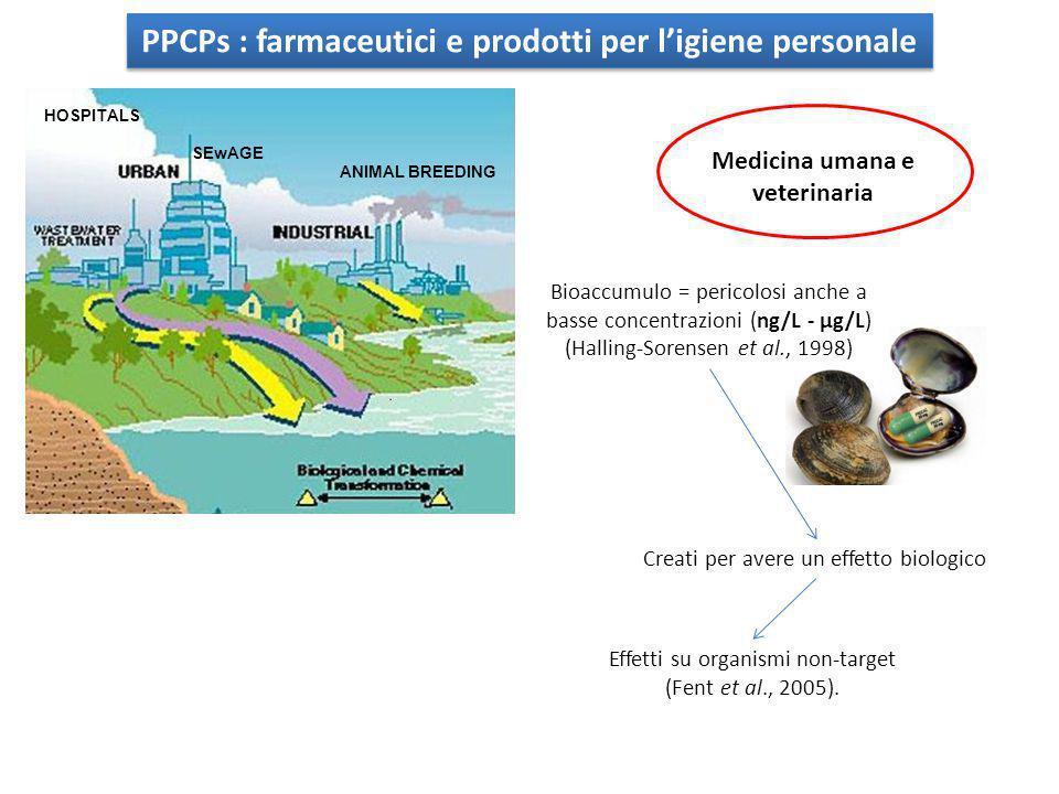 PPCPs : farmaceutici e prodotti per l'igiene personale HOSPITALS ANIMAL BREEDING SEwAGE Bioaccumulo = pericolosi anche a basse concentrazioni (ng/L -