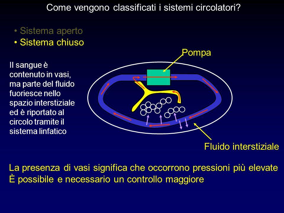 Sistema aperto Sistema chiuso Pompa Fluido interstiziale La presenza di vasi significa che occorrono pressioni più elevate È possibile e necessario un controllo maggiore Come vengono classificati i sistemi circolatori.