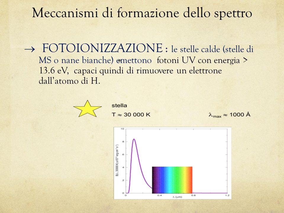 Meccanismi di formazione dello spettro  FOTOIONIZZAZIONE : le stelle calde (stelle di MS o nane bianche) emettono fotoni UV con energia > 13.6 eV, capaci quindi di rimuovere un elettrone dall'atomo di H.