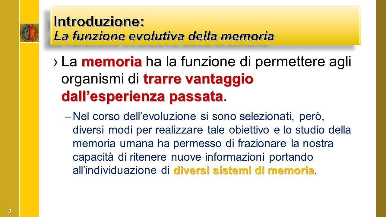 ›La memoria episodica evolutivamente compare in seguito alla memoria semantica.
