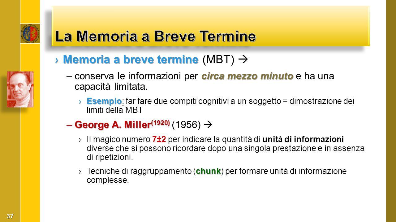 ›Memoria a breve termine ›Memoria a breve termine (MBT)  circa mezzo minuto –conserva le informazioni per circa mezzo minuto e ha una capacità limita