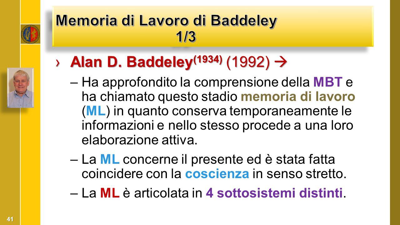 ›Alan D. Baddeley (1934) (1992)  –Ha approfondito la comprensione della MBT e ha chiamato questo stadio memoria di lavoro (ML) in quanto conserva tem