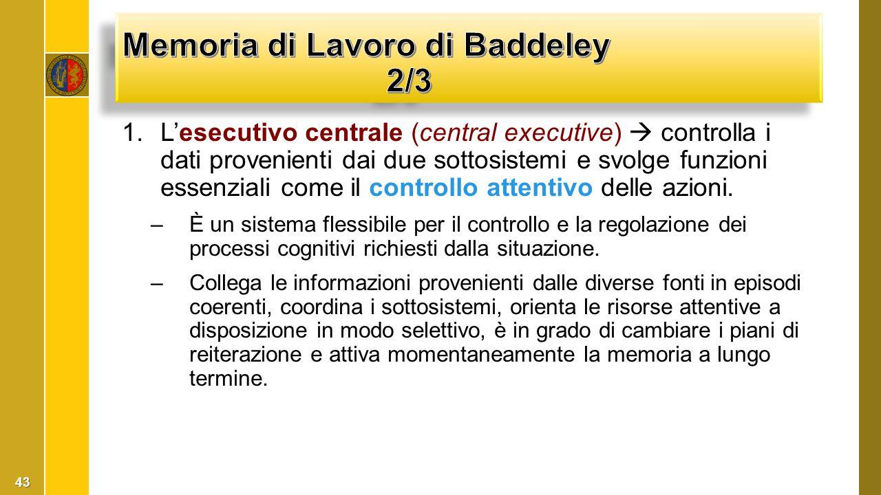 1.L'esecutivo centrale (central executive)  controlla i dati provenienti dai due sottosistemi e svolge funzioni essenziali come il controllo attentiv