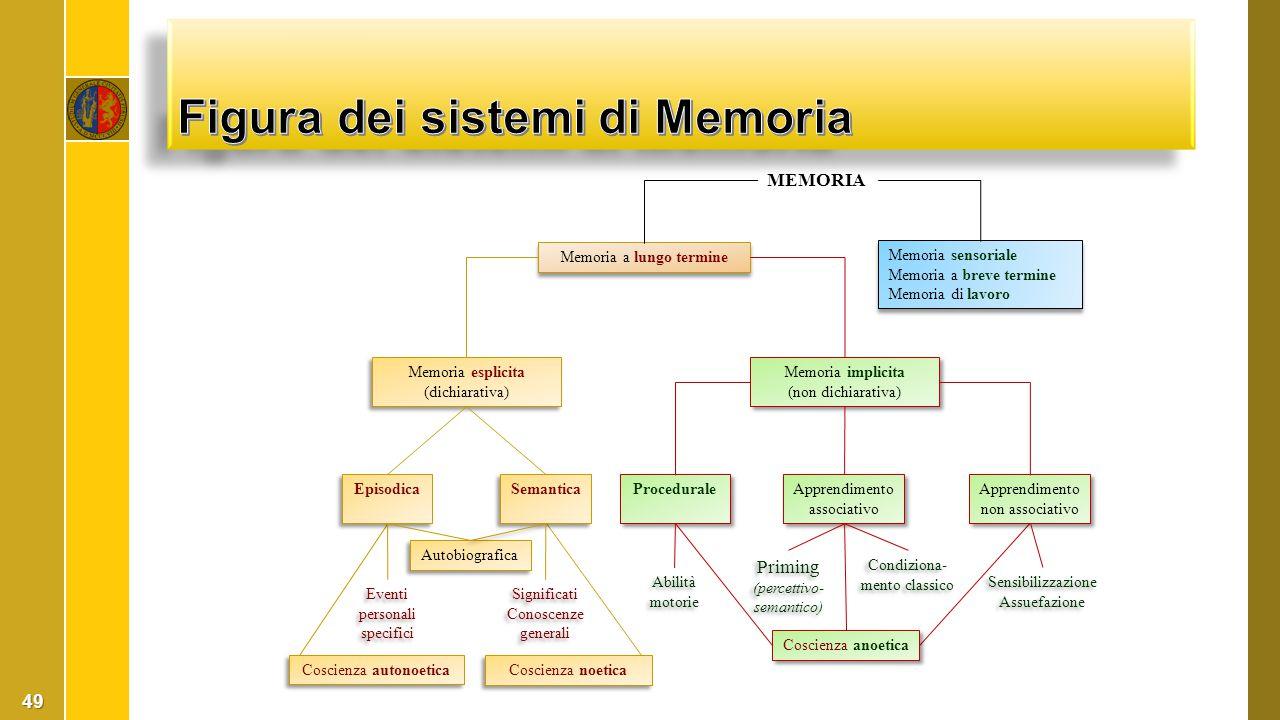 49 MEMORIA Memoria a lungo termine Memoria sensoriale Memoria a breve termine Memoria di lavoro Memoria sensoriale Memoria a breve termine Memoria di