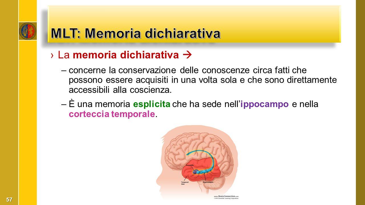›La memoria dichiarativa  –concerne la conservazione delle conoscenze circa fatti che possono essere acquisiti in una volta sola e che sono direttame