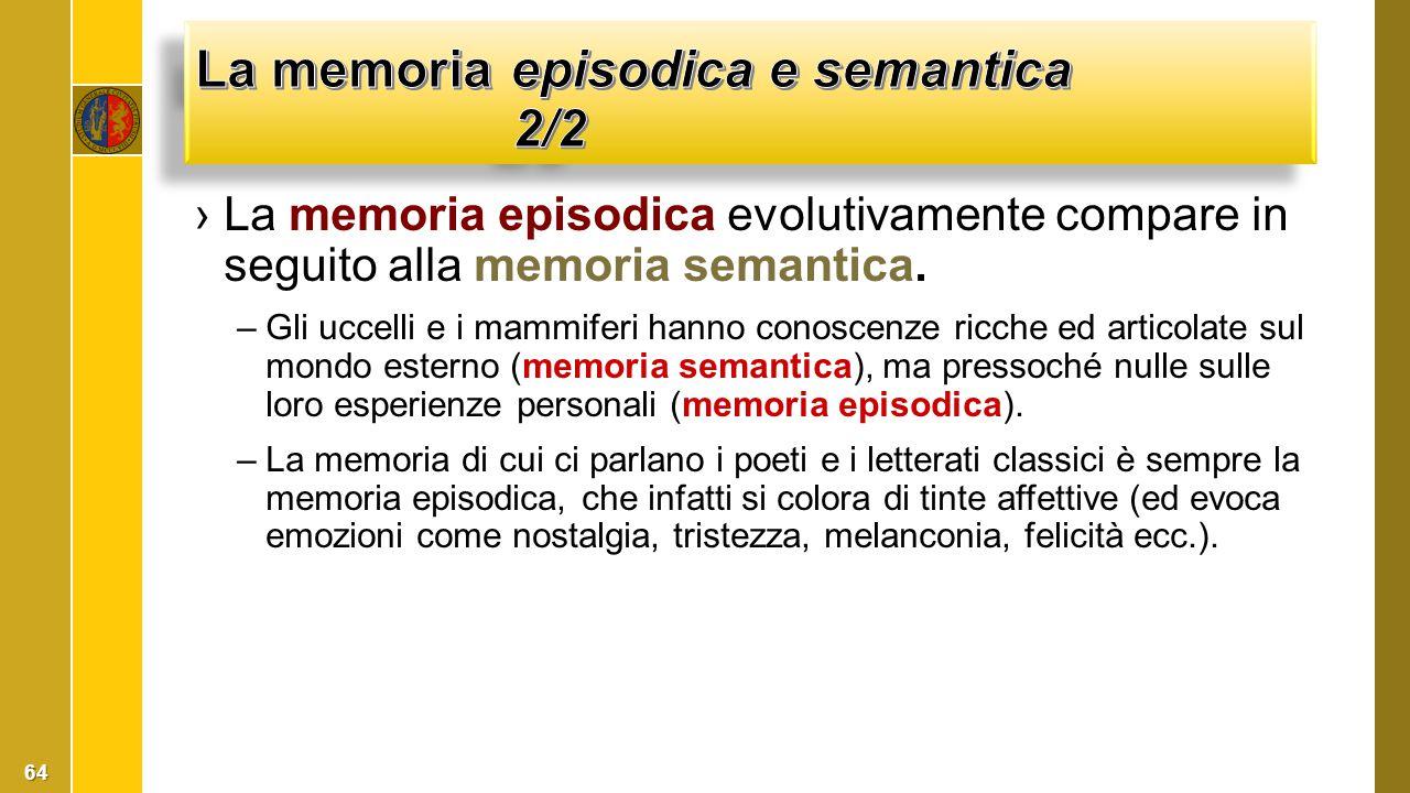 ›La memoria episodica evolutivamente compare in seguito alla memoria semantica. –Gli uccelli e i mammiferi hanno conoscenze ricche ed articolate sul m