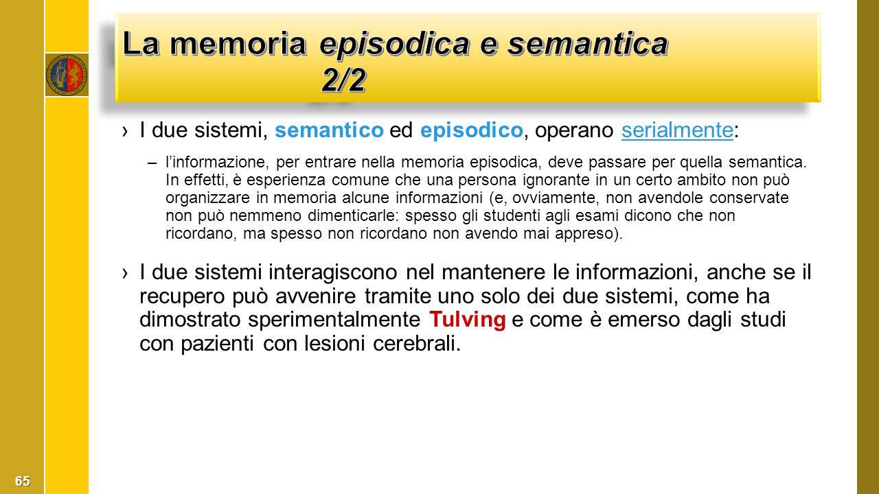 ›I due sistemi, semantico ed episodico, operano serialmente:serialmente –l'informazione, per entrare nella memoria episodica, deve passare per quella