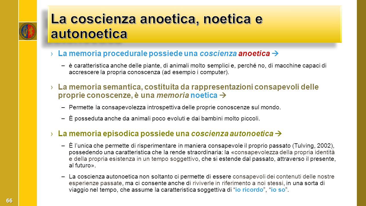 ›La memoria procedurale possiede una coscienza anoetica  –è caratteristica anche delle piante, di animali molto semplici e, perché no, di macchine ca